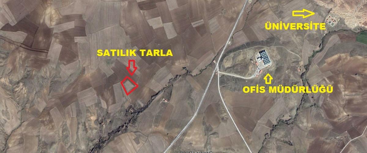Azizli Bağları 4.330 M2 Tarla